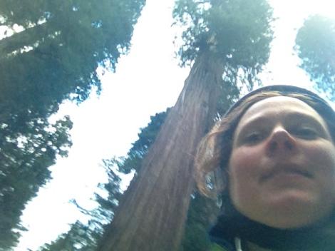 Riding redwood selfie