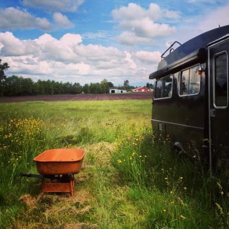 In a lovely field